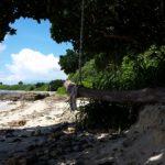 電信屋の浜