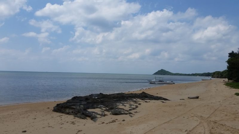 浦底湾の浜