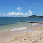 伊野田の浜